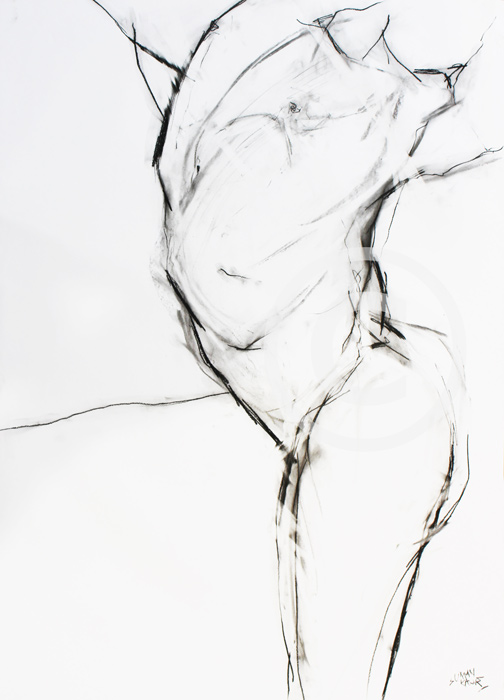 SK12 A1 Charcoal on paper. £400.00