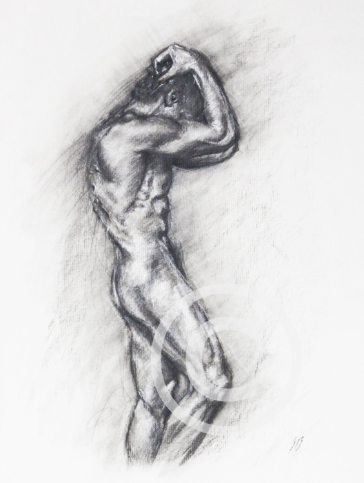 SK20 30 x 39 cm Charcoal on paper. £150.00